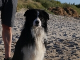 rocco-ostsee 244
