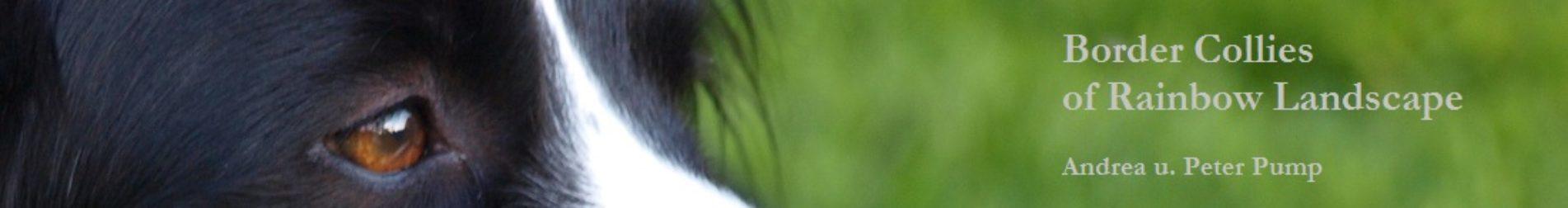 cropped-nele-2.jpg